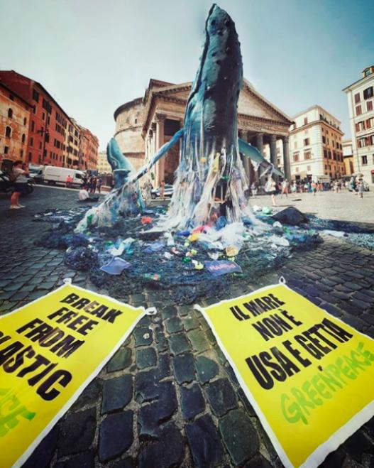 ballenas greenpeace roma