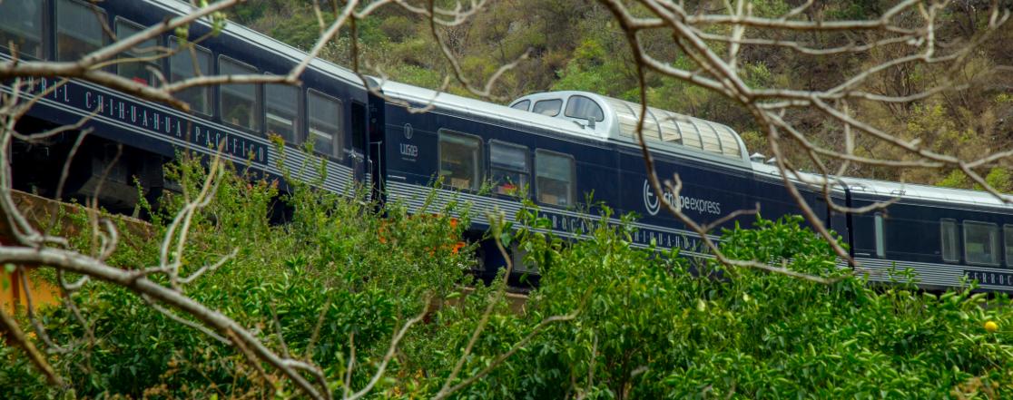 chepe express tren