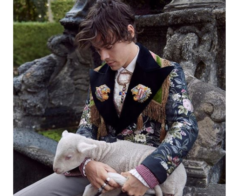 gucci-harry-styles