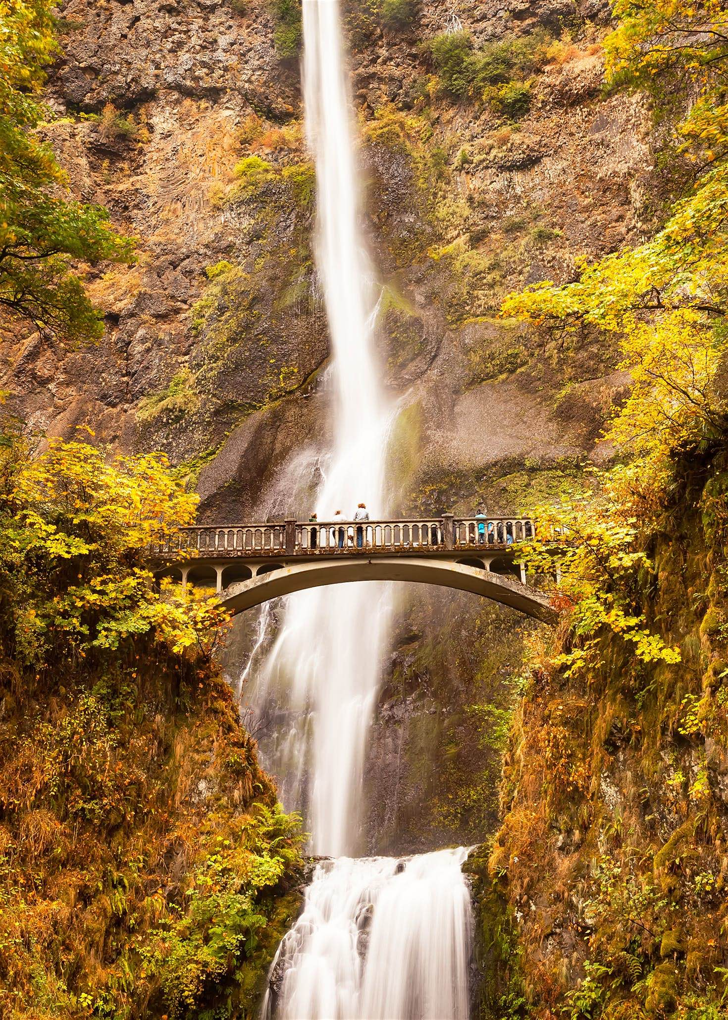El plus de Columbia River Gorge está en sus ríos y cascadas que acompañado de los colores otoñales son dignos de una postal.