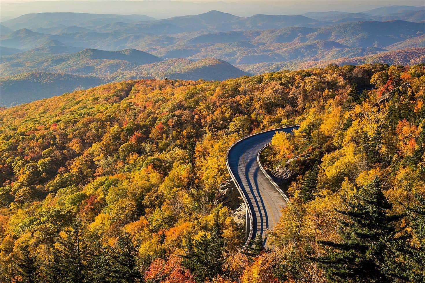 Blue Ridge Parkway una carretera donde verás todo tipo de árboles: cornejos rojos, robles color amarillo y zumaques multicolores.